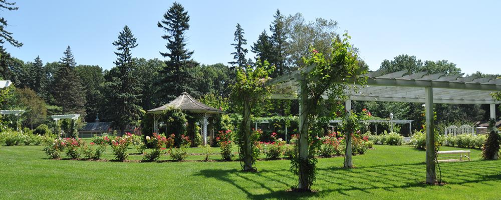 Community development for Olive garden west springfield ma